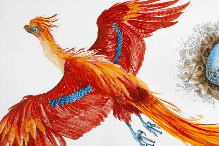 Google Arts and Culture Debuts Interactive Digital Harry Potter Exhibition
