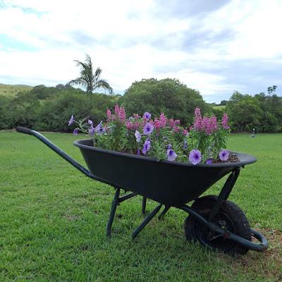 Portable Garden Beds Ideas
