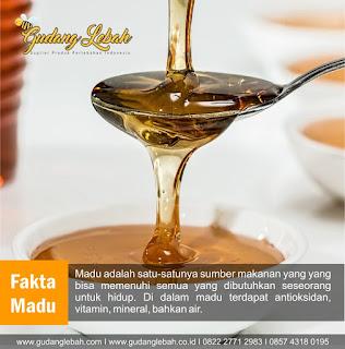 madu asli, madu asli dimadiun, madu madiun, penjual madu asli, peternak lebah madu madiun, supplier madu asli dimadiun, tempat jual madu asli dimadiun, fakta madu, madu asli, guzu madu