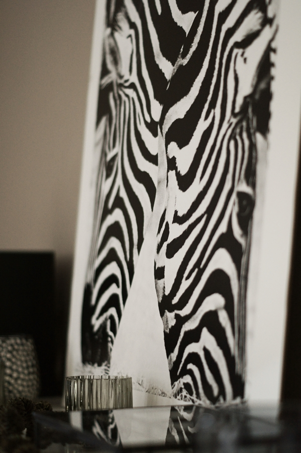Blog + Fotografie by it's me! - Kooperation Posters - Print Zebras Detail