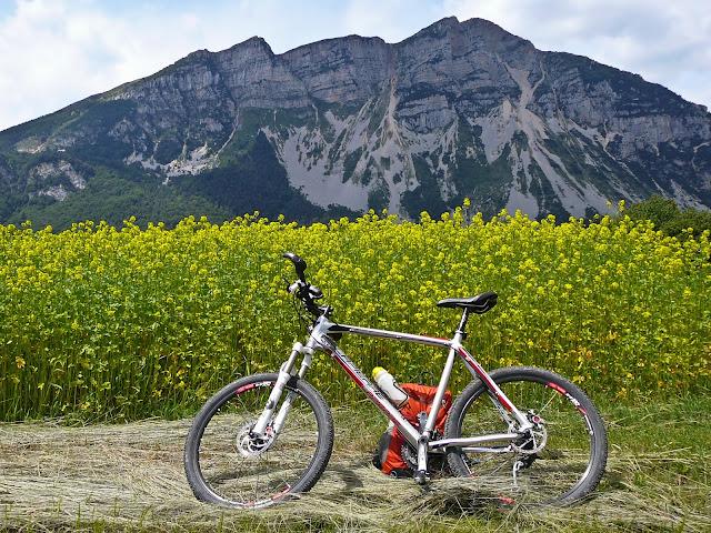 MTB Altogarda Trentino