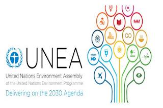 Foto Cortesía: UNEA WWF