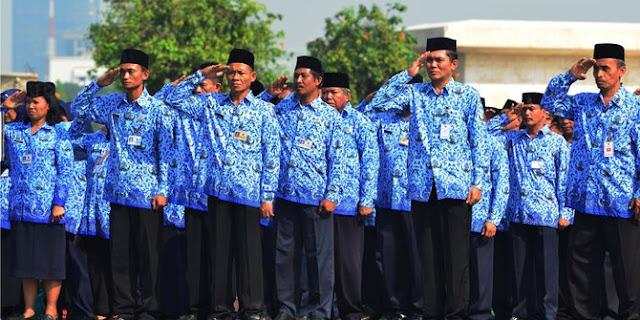 Belum Ada Alokasi Untuk Honorer Bidan dan Dokter PTT CPNS 2017