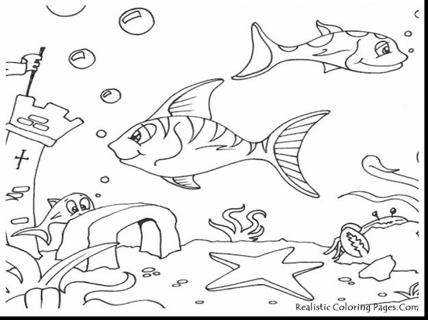 Marvelous Ocean Fish Coloring Pages With Sea Animal Coloring Pages And Sea  Animal Coloring Pictures