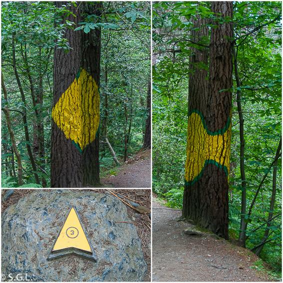 Rombo en el bosque de Oma de Ibarrola