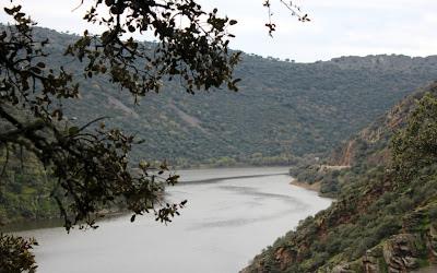 Río Tajo desde el mirador el Serrano. Monfragüe. Cáceres