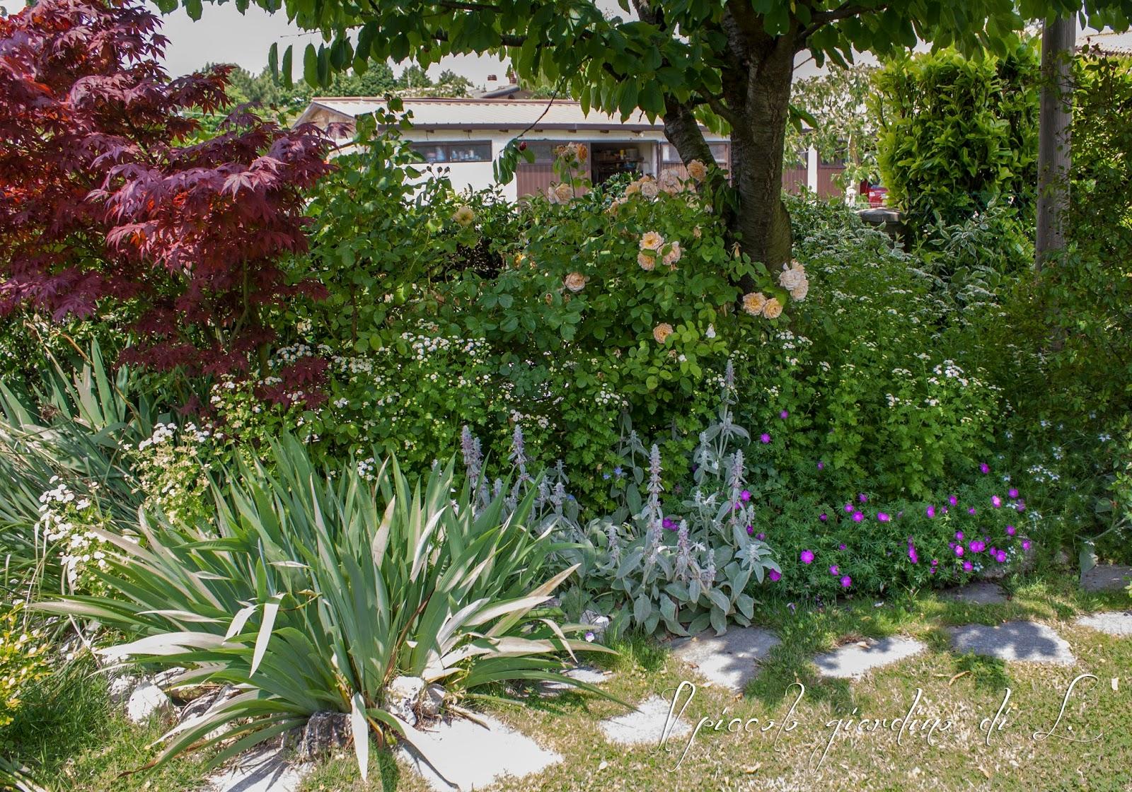 Angoli rigogliosi del giardino l 39 informazione di informarmy - Angoli di giardino ...