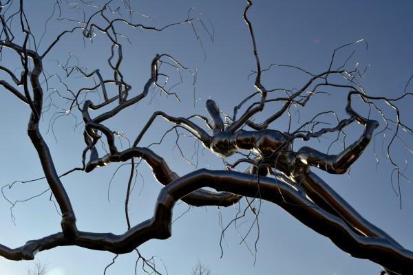 """Sculpture Garden, Washington DC: Создала это дерево Roxy Paine, скульптура называется """"Graft"""". У нее деревовидных скульптур несколько."""