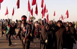 Islamic Movement in Nigeria (IMN)