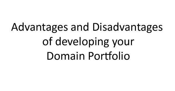 Advantages and Disadvantages of developing your Domain