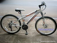 Sepeda Gunung Phoenix 26-177 Pro Racing Fashion 26 Inci