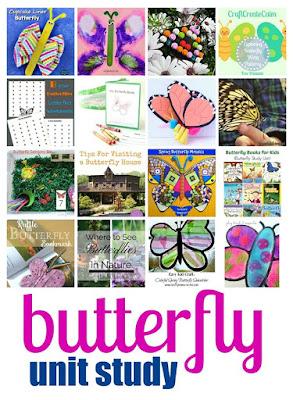 Butterfly Unit Study Ideas