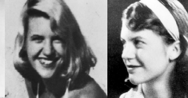 leaving cert essay on sylvia plath Sylvia plath more than any other poet on the course, sylvia plath made me think as i look at leaving cert papers and i see a small piece of harmless paper.