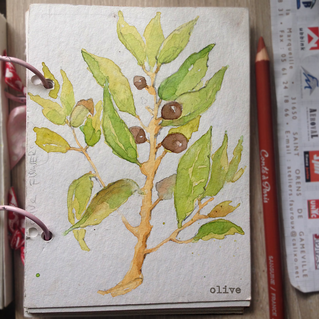 Olives Watercolor Image