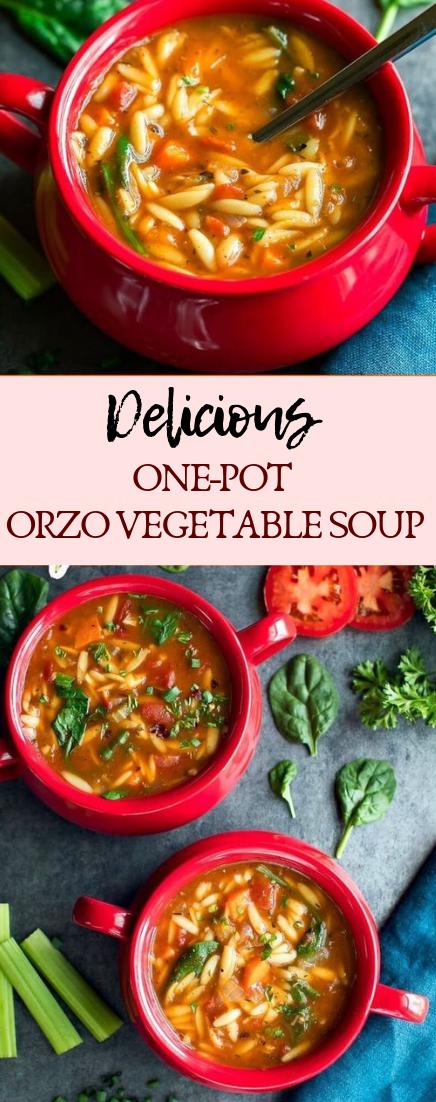 ONE-POT ORZO VEGETABLE SOUP #dinnerrecipe #food