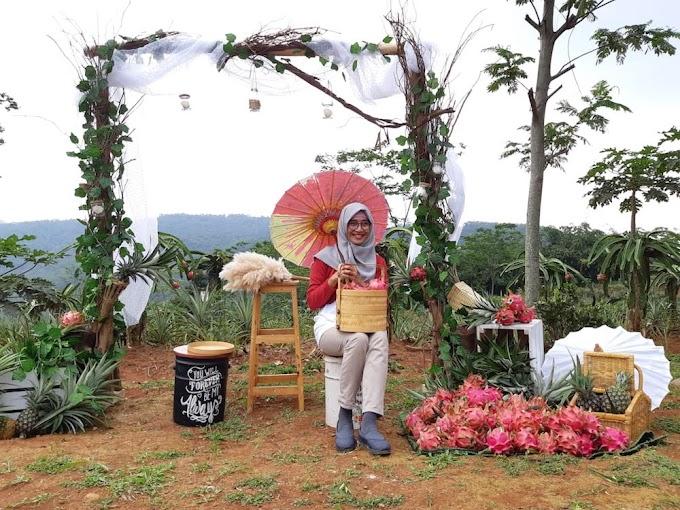 Serunya Wisata Di Kebun Indonesia Berdaya