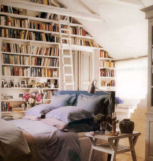 Selected Spaces: Library+Bedroom. Books