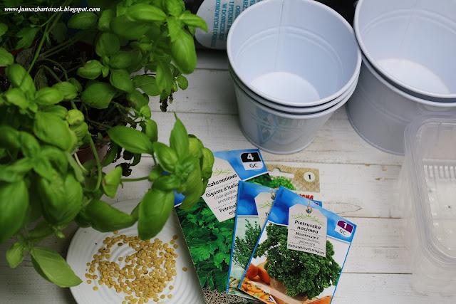 Domowy zakątek ziołowy - sadzenie