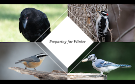 October 1 Program: Preparing for Winter