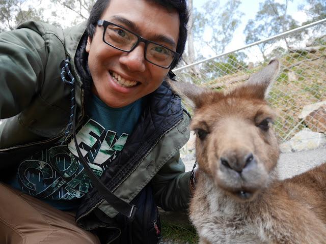Selfie with Kangguru!
