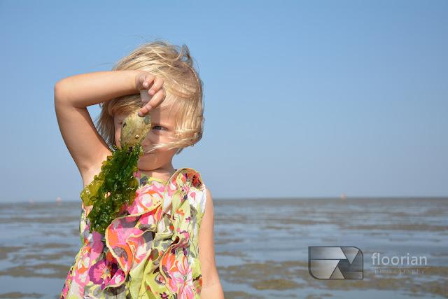 Top atrakcje turystyczne Dolnej Saksonii i Cuxhaven nad Morzem Wattowym