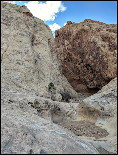 Pretty Pool Areas that would be gorgeous just after a storm just  outside the beginning of the Slot Canyon