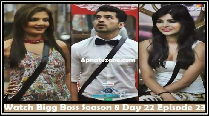 Bigg boss season 3 episode 13 part 3 / Silver cast warowl