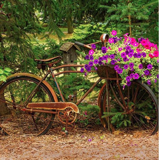 Jolies id es r cup pour le jardin for Decoration jardin velo