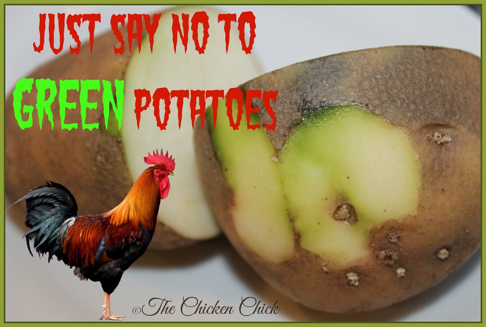 Fact: Potatoes are an acceptable treat for chickens. Green potatoes are not a safe treat.