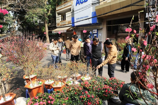 Six famous Tet flower markets in Hanoi 5