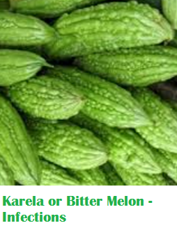 Health Benefits Of Karela or Bitter Melon - Infections