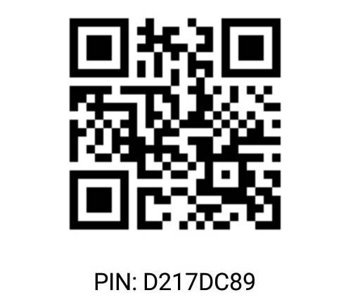 Pin D217DC89