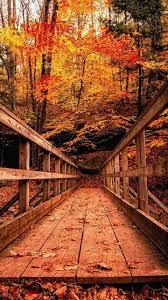 world best bridge hd wallpaper24