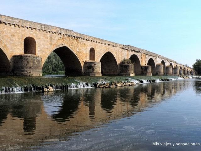 Puente de Piedra, Toro