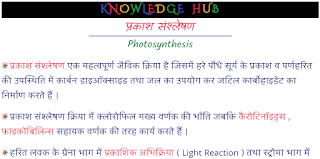 Photosynthesis Hindi Notes PDF Download