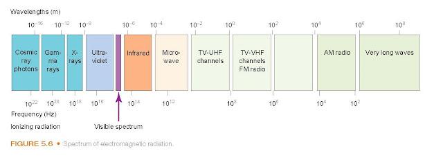 Spectrum of electromagnetic radiation.