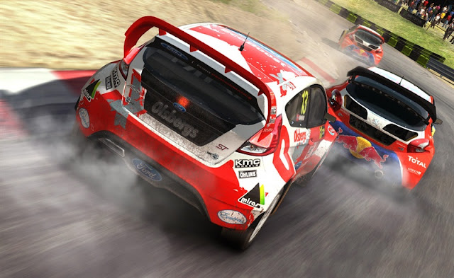 Dirt Rally PC Game Download Photo