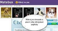 MateBux, matebux.com - zarabianie przez internet