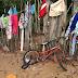 Vietnã: A guerra pela sobrevivência na favela