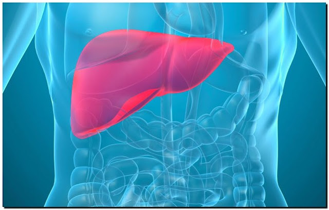 Cara Mudah Mencegah Penyakit Liver Secara Alami