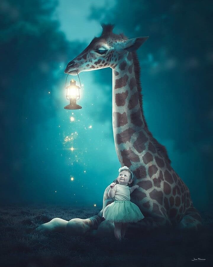 02-Night-light-Jose-Francese-www-designstack-co