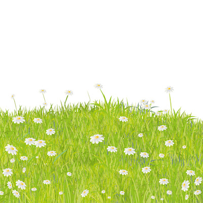 Summer Grass vector background