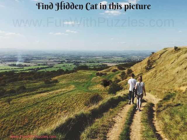 Can you find hidden cat in this picture puzzle