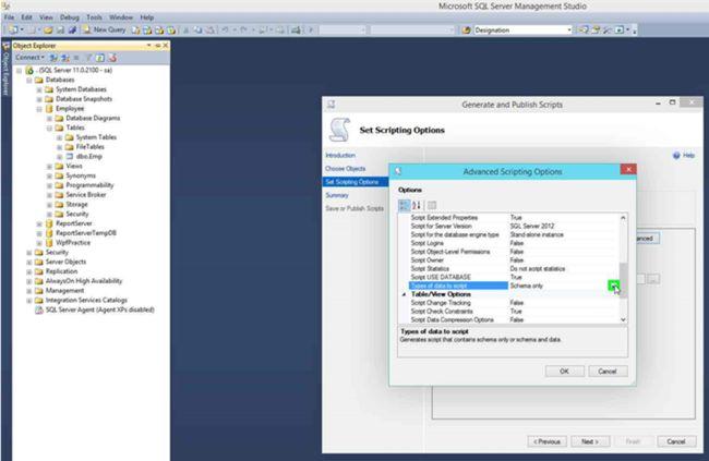 Generating Scripts in SQL Server