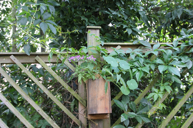 How to make a reclaimed wood hanging planter