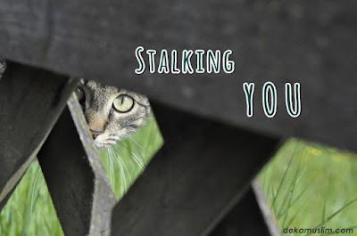 http://www.dekamuslim.com/2017/04/stalking-you.html