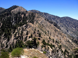 View southeast from Mount Islip Trail toward Windy Gap and Hawkins Ridge, Crystal Lake, Angeles National Forest