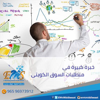 التسويق الالكترونى|عناصر التسويق الالكترونى الناجحة 1