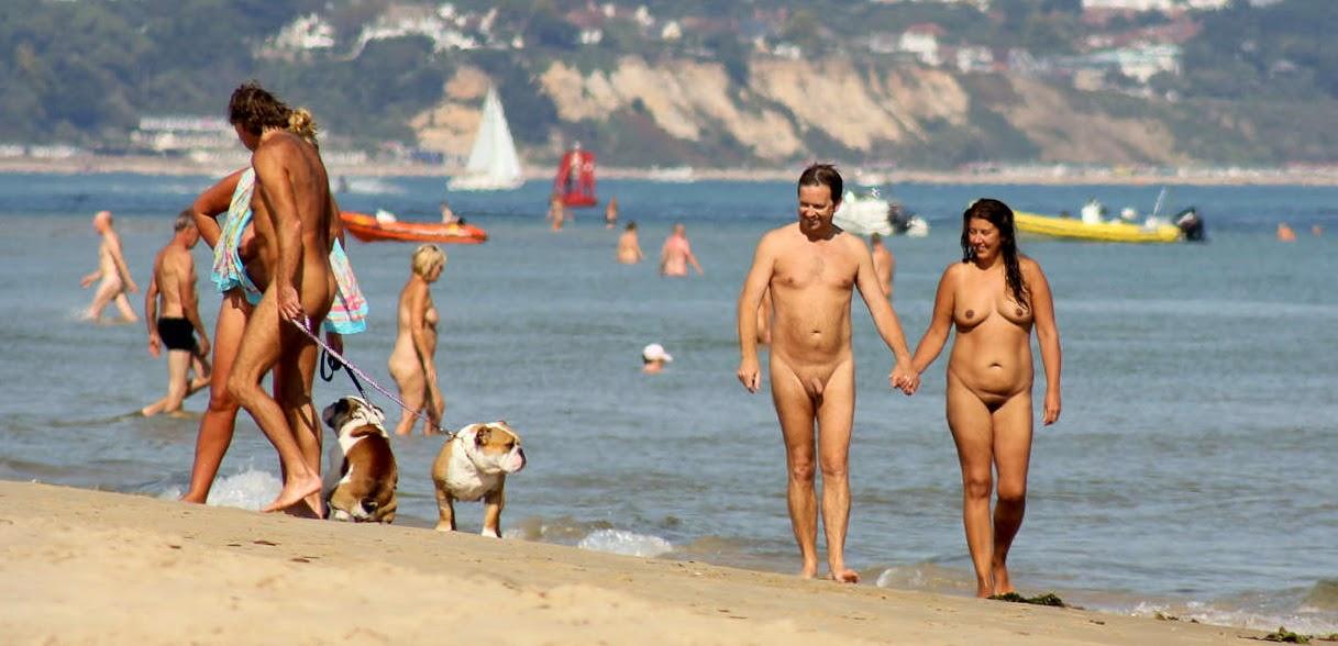 Agree with Nudist beach studland urbanization any