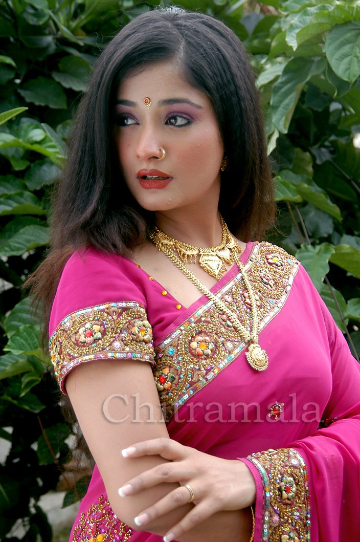 Amazing Videos Cute Wallpapers Kiran Rathod Latest Hot Stills In Pink Saree My Wallpapers